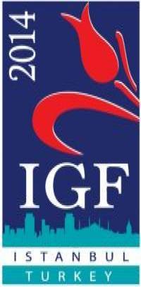 IGF 2014 Logo